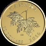 カナダ2016年メイプルリーフと2003年の女王エリザベス2世10ドル金貨リバース